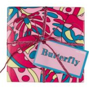 butterfly_web_ayr_gift_